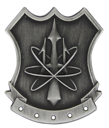 Navy Badge: Nuclear Weapons Security - regulation size