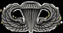 Navy Badge: Basic Parachutist - regulation size, oxidized