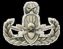 Navy Badge: Master Explosive Ordnance Disposal - regulation, oxidized