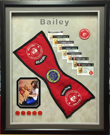 Pet Memorial Shadow Box Display- Bailey's Therapy  Work