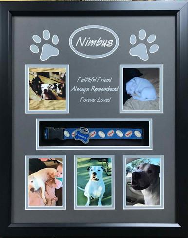 Pet Memorial Display Frame- Nimbus