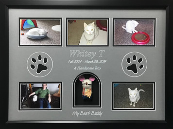 "16"" x 22"" Pet Memorial Shadow Box Frame #17"