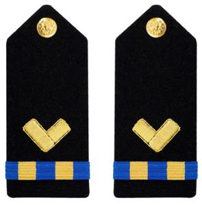 Navy Warrant Officer 2 Hard Shoulder Board- Repair Technician