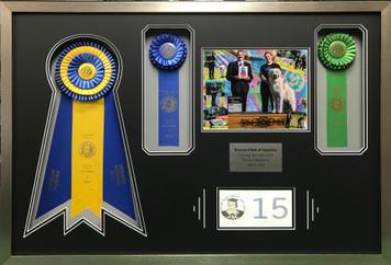 AKC Award Display Frame