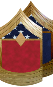 US Marine Corps E-8 First Sergeant Shadow Box w/ Flag Window