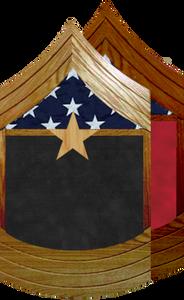 US Marine Corps E-9 Sergeant Major Shadow Box w/ Flag Window