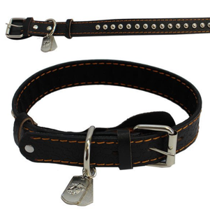 Pet Insignia- XL Spiked Leather Collar w/ Eagle, Anchor and Globe