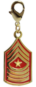 Pet Insignia Rank Charm -  Sergeant Major