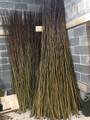 1000 x Salix Viminalis 2.5 metre Willow Rods / Whips