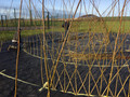 12m Diameter Willow Maze with Dome at Centre
