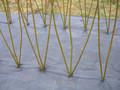 1m Long Living Willow Tunnel Kit (1.8m High, 2.0m Wide)