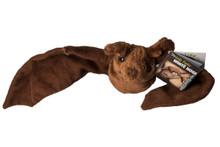 Newly designed Mexican Freetail plush bat.