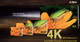 Dahua 4K 1080P 720p D1 Banner Sample