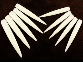 Natural Long Stiletto Tips (10)