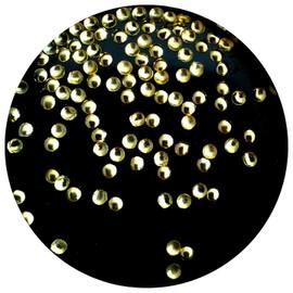 Round  Studs 1.5mm -  Gold
