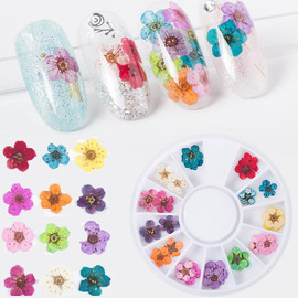 Dried Flowers Kit 2