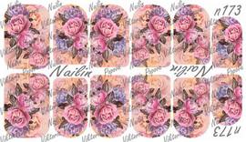 Nailin Film - 173