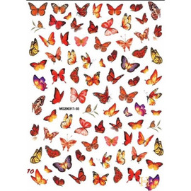 Butterfly Decals - MG200317-03