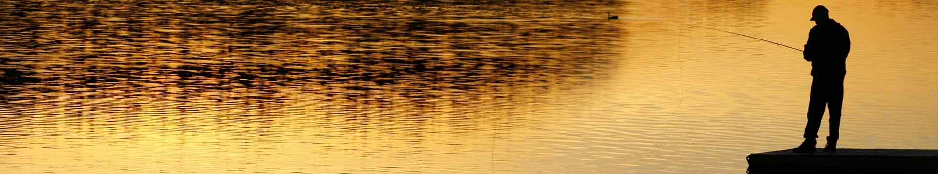 Daiwa Aird Fishing Reel