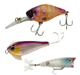 hard body fishing lures