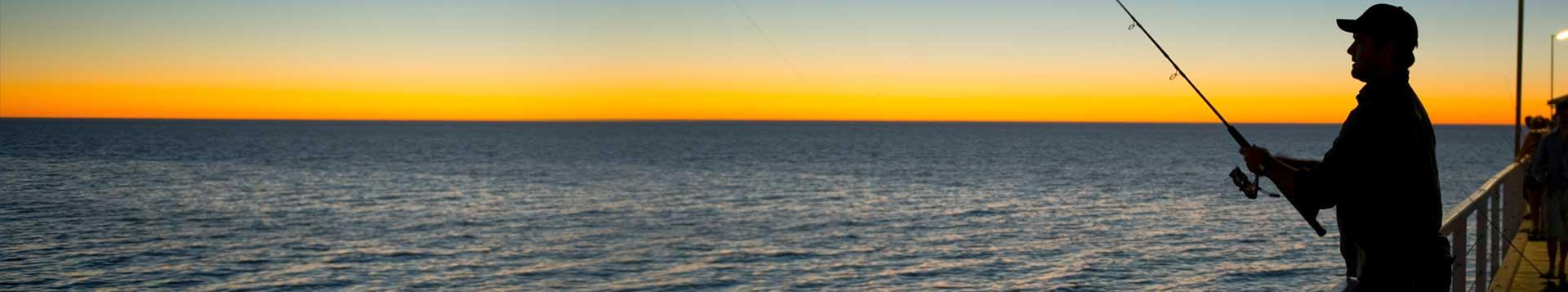 Rovex Fishing Rods