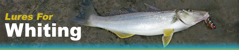 whiting-lures-banner.jpg