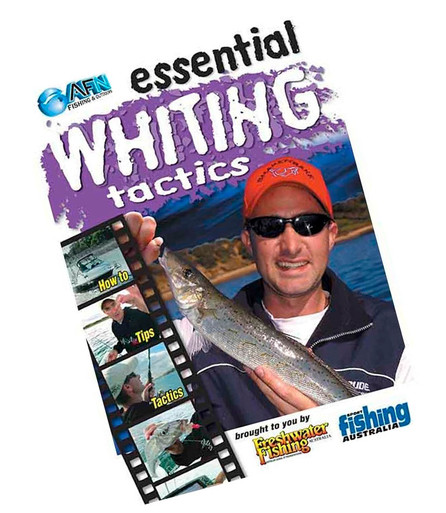afn-essential-whiting-tactics-fishing-dvd