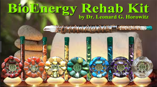 bioenergy-rehab-kit-banner1-7.5.jpg