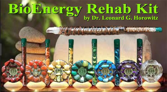 bioenergy-rehab-kit-banner1-7.5.jpg