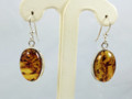 Amber Oval Earrings