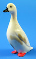 Ivory Fowl