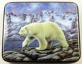 Polar Bear by Danshin