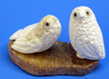 Pair of Snowy Owl | Alaskan Ivory Carving