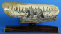 Large Bear with Fish Scrimshaw by George Vukson