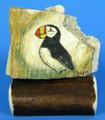 Proud Puffin - Scrimshaw by George Vukson
