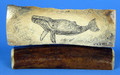 Whale - Scrimshaw by George Vukson