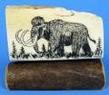 Mammoth Ivory Scrimshaw