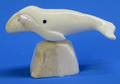 Whale by Moses Soonagrook | Alaskan Ivory Carving