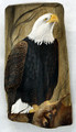 Painted Driftwood  - Eagle Spirit