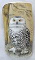 Painted Driftwood  - Owl's Eyes