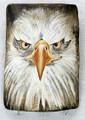 Painted Driftwood  Key Holder - Eagle's Eyes