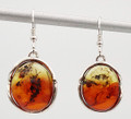 Two Color Baltic Amber Earrings