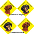 Emergency Save My Dachshund(s) Sign with Suction Cup