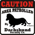 Caution Sticker - Caution Area Patrolled by Dachshund Security Decal Sticker