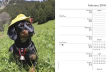 2018 Crusoe the Celebrity Dachshund Spiral Bound Weekly Planner Calendar Book