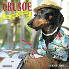 Crusoe the Celebrity Dachshund 2018 Mini Size Calendar