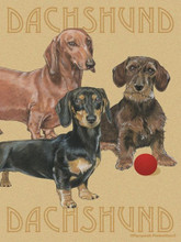 Tan Garden Flag with 3 Dachshunds