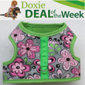 FREE Shipping - Save $2! - DANCING FLOWERS - Custom Dachshund Walking Harness Vest