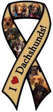 I Love Dachshunds Large Ribbon Magnet - Variety of Doxie Styles