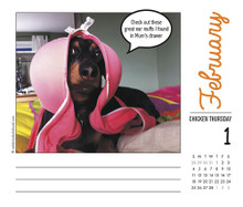 2018  Crusoe The Celebrity Dachshund Daily Desk Box Calendar
